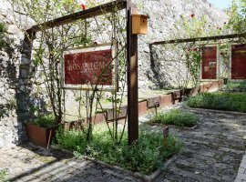 The grand opening of the renewed Rosarium in Siklós