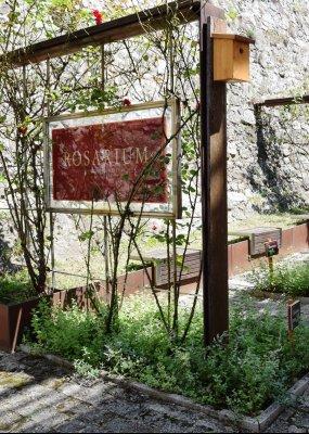 The grand opening of the renewed Rosarium in Siklós